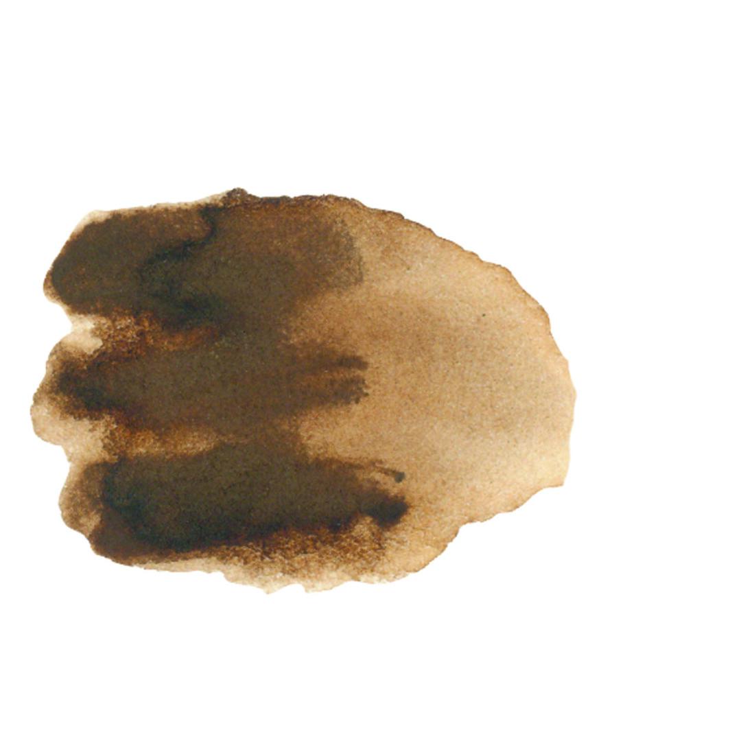 Daniel Smith original Watercolor Stick 12ml Paint , Burnt Umber-2298